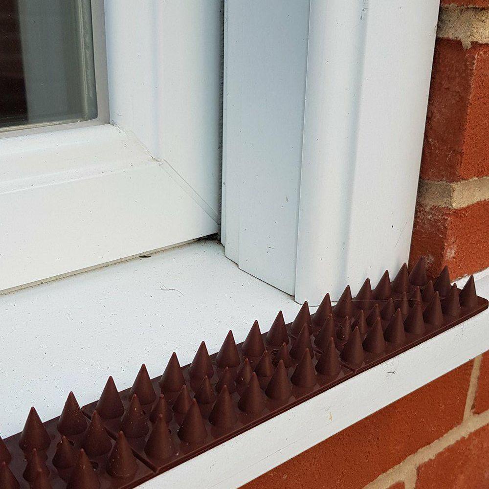 Bug Zapper Bulbs >> Fence Wall Spikes Garden Security Intruder Bird Cat ...